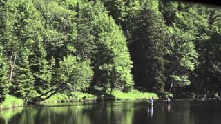 The Hungry Trout – Fly Fishing in the Adirondack Mountains
