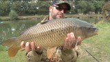 Fly Fishing for MONSTER CARP