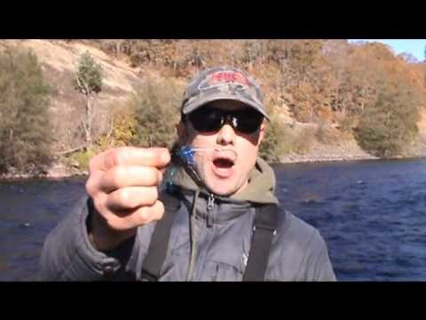 Fly Fishing Steelhead for Beginners – Part 1 – The Basics