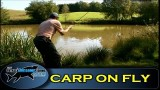 Fly fishing for CARP- Series 1- Episode 10 – TAFishing