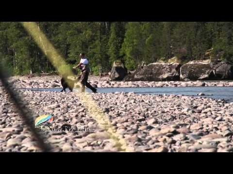 BC Steelhead Fly Fishing (Skeena River)