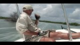 Amazing Tarpon Fever Fly Fishing Cuba FULL HD