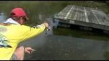 Amazing dock shooting technique for Crappie!