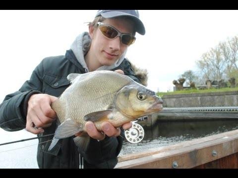 Flyfishing for Bream