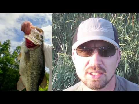 """Gills On The Fly"" – Basic Fly Fishing Techniques For Bluegills"
