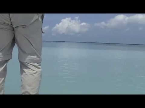 Tarpon Fly Fishing: 100 pounder in a foot of water Islamorada, Florida Keys.