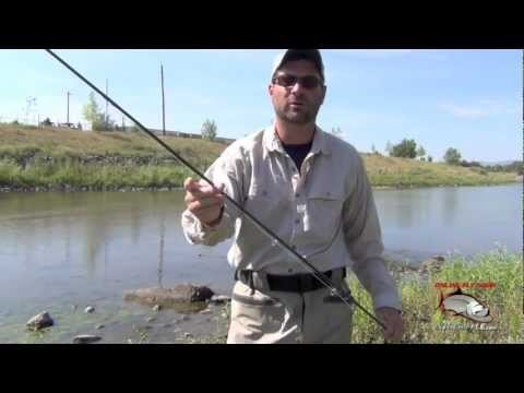 Fly Fishing Gear For Carp | Carp Fly Fishing Information
