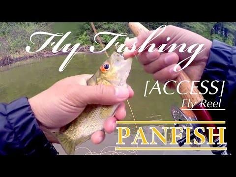 Orvis Reel Fly Fishing ~ Panfish