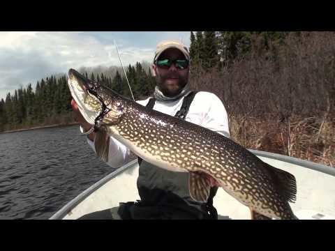 White River Air – Fly Fishing for Huge Pike