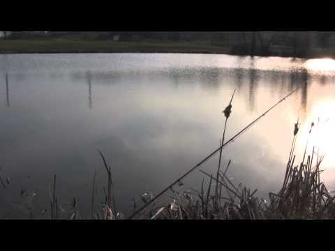 Fly fishing for panfish, topwater