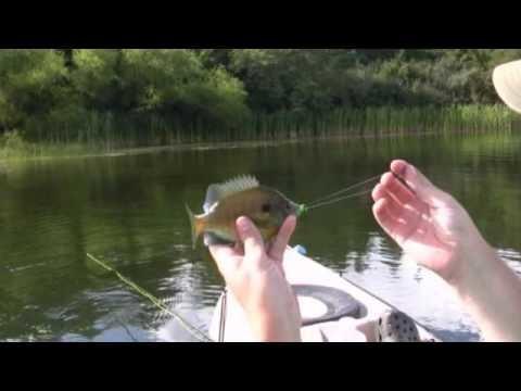 Kayak fly fishing for panfish