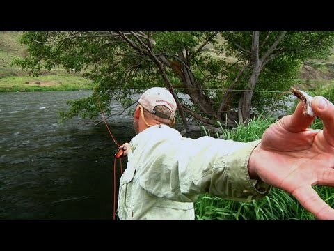 Sky High Salmonfly by Todd Moen – Deschutes River Fly Fishing