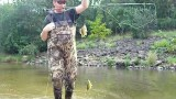 Fly Fishing For Big Creek Bluegills, Panfish and Bass LyubakaVideo