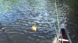 bass, pike and panfish fishing in the adirondacks