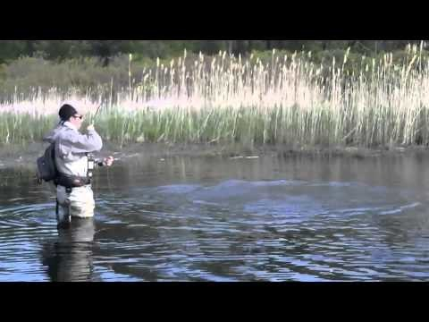 Fly Fishing Warm Water Pursuits 2011.mov
