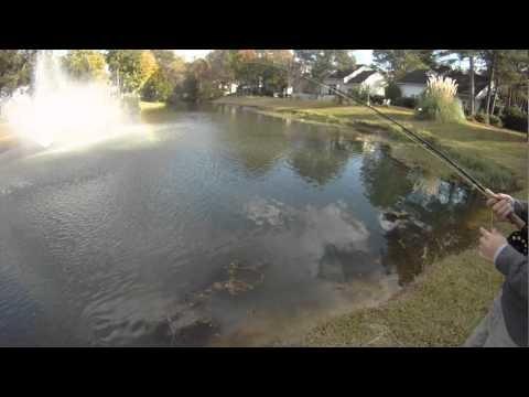 Winter Flyfishing for warm water fish