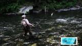 Russian River Alaska Fly Fishing