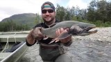 Alaska Fly Fishing – Rainbow Trout, Silver Salmon, and Arctic Char (HD)