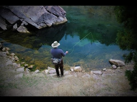 Utah's Green River – Fly Fishing the Aquarium