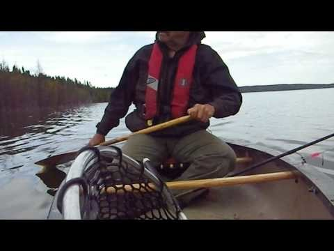 Canoe Lake Trout
