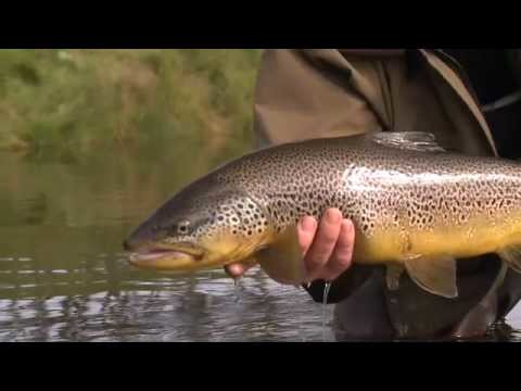 The Source – Iceland : Fly Fishing DVD Teaser 1