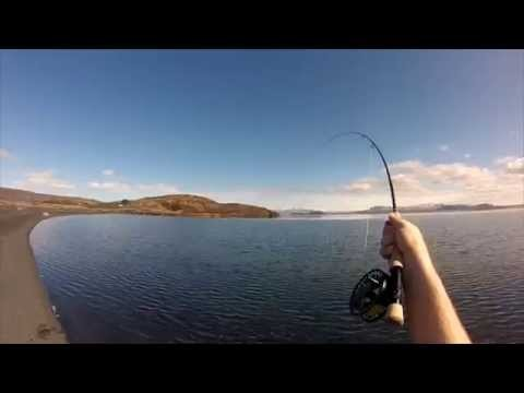 Dry fly fishing – Lake Þingvallavatn / Thingvallavatn