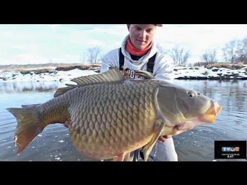 Winter Flyfishing Shaker – Uncut Angling – January 31, 2013