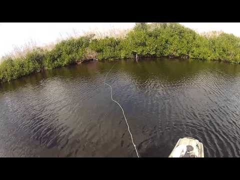 Kayak Fly Fishing The Everglades Headwaters