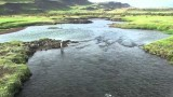 WhereWiseMenFish -Salmon Fishing in Iceland