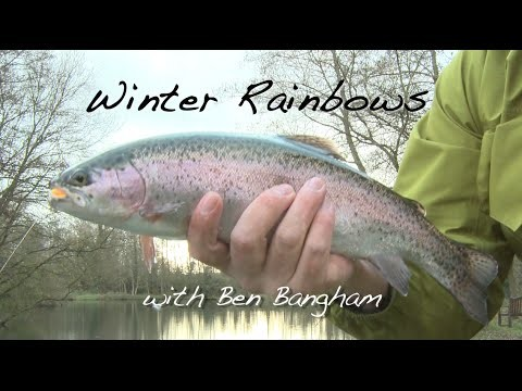 Beginners Guide to Fly Fishing for Still Water Winter Rainbows
