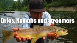"W4F – Fly Fishing ""Dries, Nymphs and Streamers"" West Branch Delaware River"