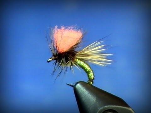 Fly Tying: Clown Shoe Caddis
