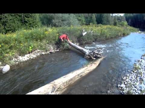 Fly Fishing in Ontario – Chinook Salmon | Pink Streamers & Cedar nets!