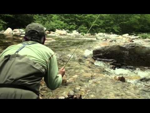 where fish live -The Orvis Guide to Fly Fishing