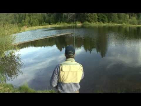 HD Successful Fly Fishing for the Beginner