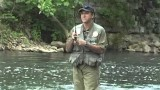 How To Fish Wet Flies-Wet Fly Fishing