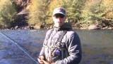 Swinging Steelhead Flies – Fly Fishing Steelhead for Beginners – Part 2