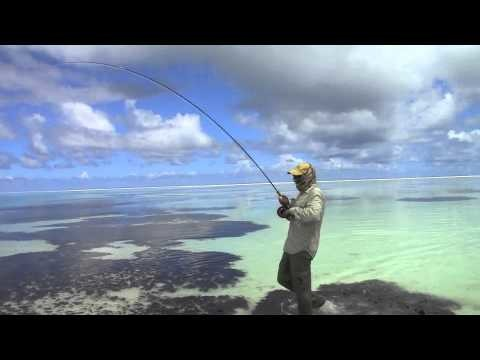 Fly Fishing for GT in the Seychelles, Alphonse island
