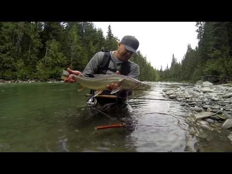 Fly Fishing for Bull Trout in Nothern BC with Loop Fly Tackle