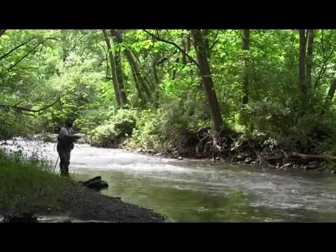 Introduction to Wet Fly Fishing, Part 2 Fishing Small Streams, Holsinger's FLy Shop