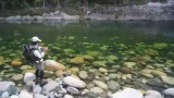 Anton Donaldson   New Zealand fly fishing guide HD