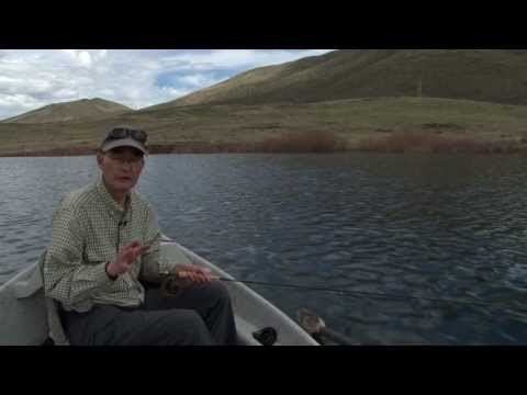How to Fly Fish – Stillwater Tips