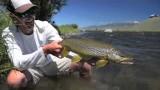 2013 Fish REEL – fly fishing Montana