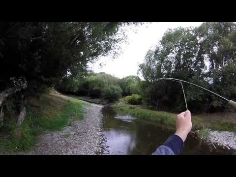 A Day With A Dry Fly – Fly Fishing New Zealand