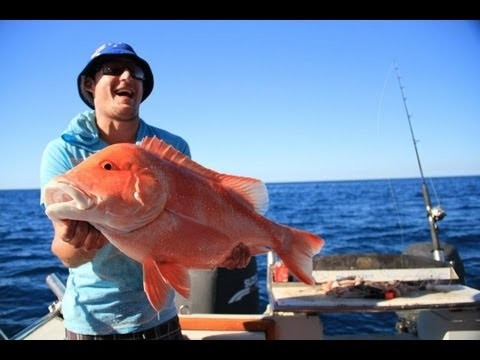 Fly Fishing with PE Tackle flies on the Great Barrier Reef!!