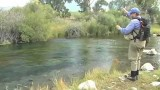 Dry Fly Fishing on Nelson's Spring Creek Ranch