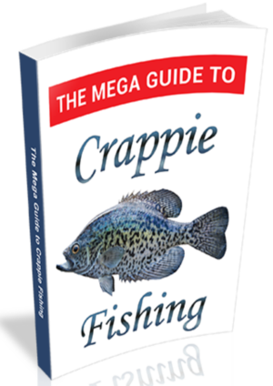 Crappie Fishing Guide